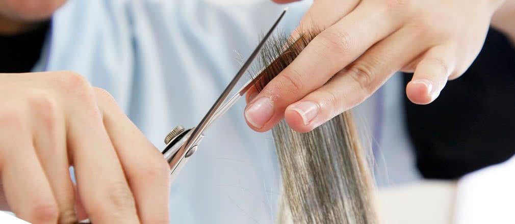 美容師・理容師修得者課程